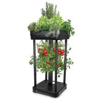  Upside Down Tomato Garden with Planter Top