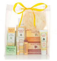 $25 Holiday Sampler Gift Bag @ Burt's Bees