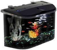 $23.2 Aquarius 5 Gallon Aquarium Kit