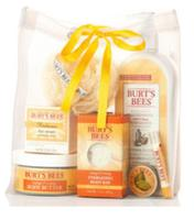 $15 Burt's Bees Fall Grab Bag (Over $50 Value)