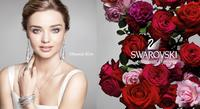25% off  Swarovski Jewelry @ Lord & Taylor
