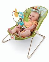 $20 Fisher-Price Forest Fun Bouncer