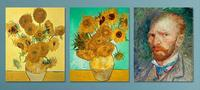 "$32.99 16""x20"" Vincent van Gogh Print on Metal"