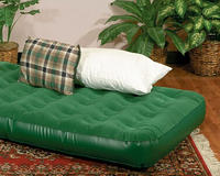 $10 Texsport Twin Air Bed(Green)