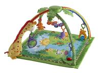 $42.49 Fisher-Price Melodies & Lights Deluxe Gym
