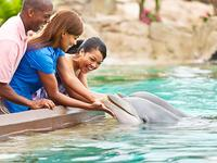 $20 Off SeaWorld Any Day Ticket